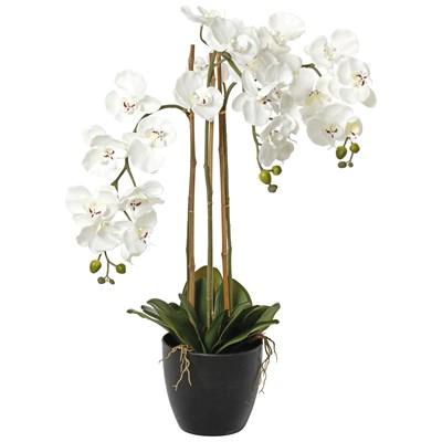 Phalaenopsis künstlich 80 cm
