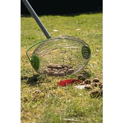 Nuss- und Obstsammler