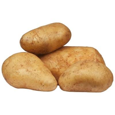 Saatkartoffeln Agata 5 kg