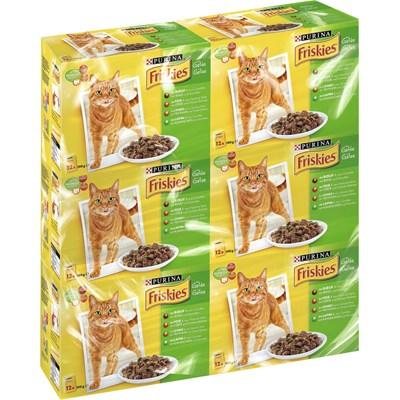 Katzenfutter Friskies Gelée 72×100g