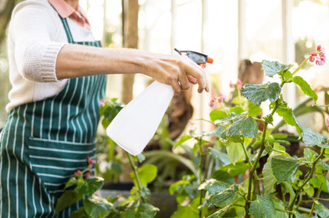 Pflanzenschutzberater